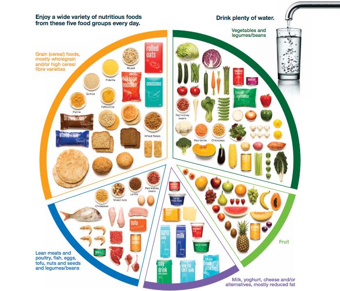 Children: Maintaining a well-balanced diet at Summer Camp.